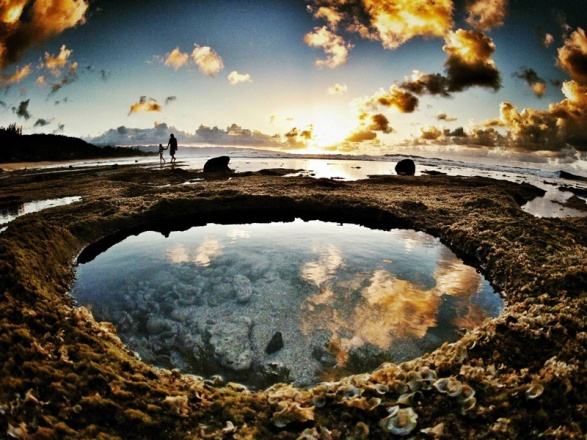 tide-pools-at-rocky-point-mexico