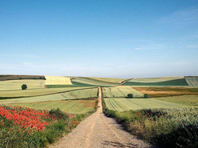 camino-pilgrimage-george_89658_990x742