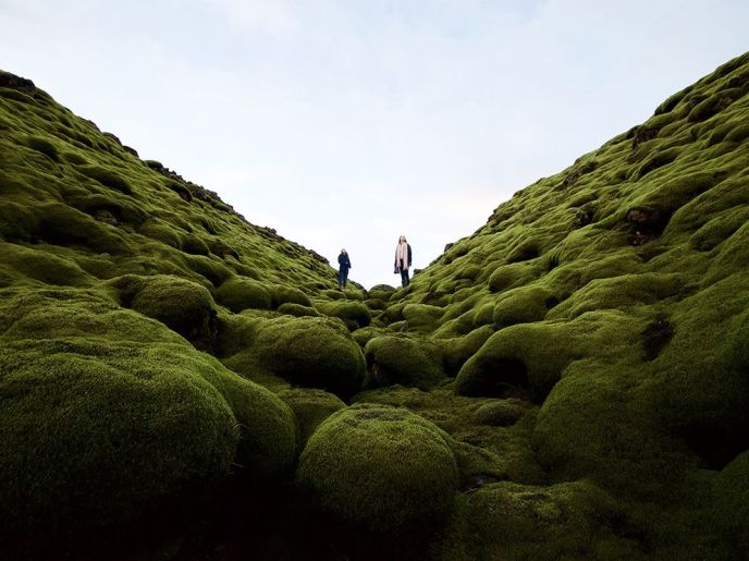 mossy-lava-iceland_94435_990x742