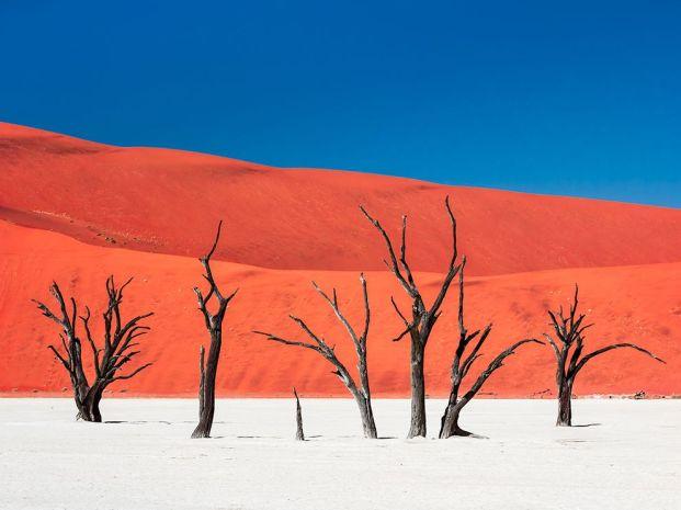 namibia-desert-scene_93545_990x742
